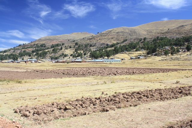 Peruvian fields