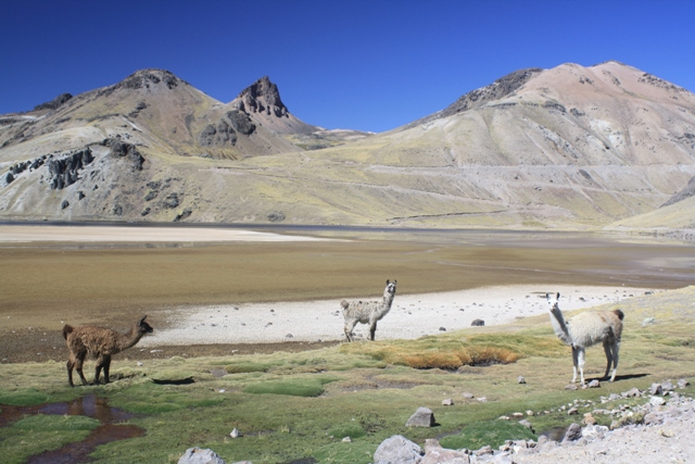 Lakes near Huacullo - the start of the climb to Abra Azuca