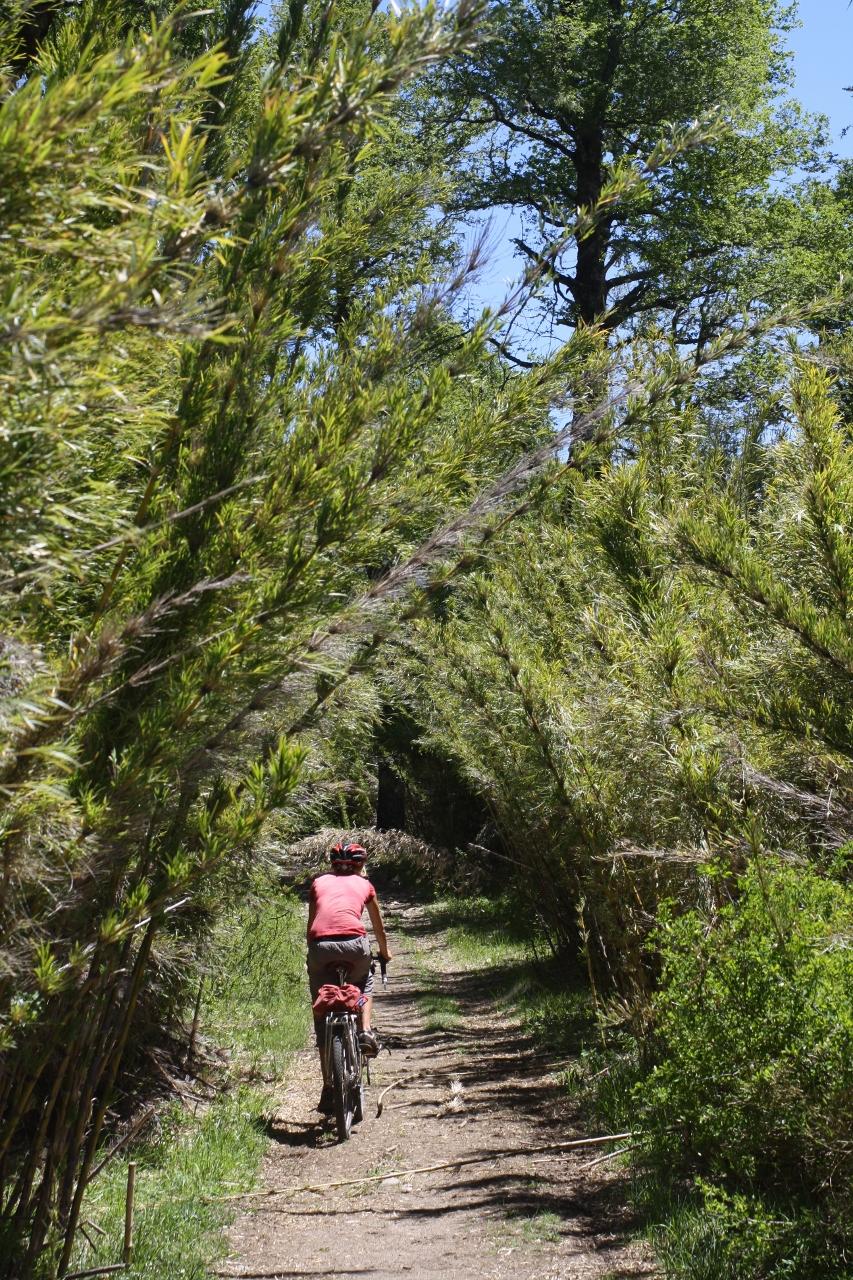 4x4 Track to Lago Hui Hui