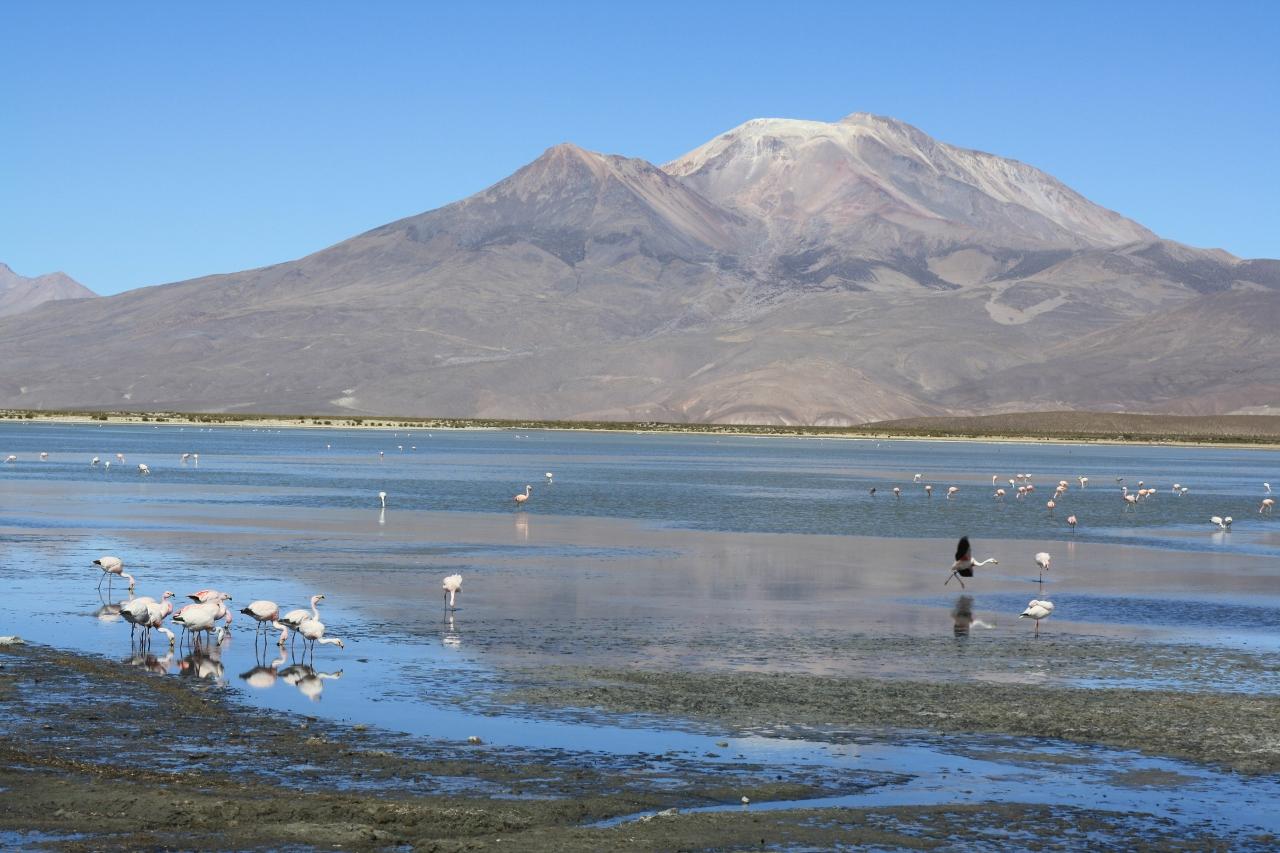 Lago Macaya