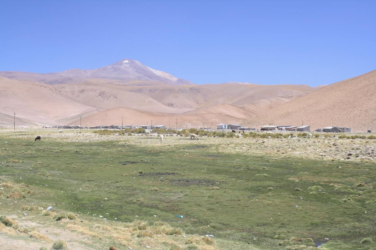 Santa Rosa de los Pastos Grandes